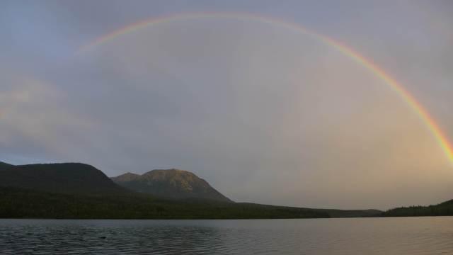 Rainbow Kontrash