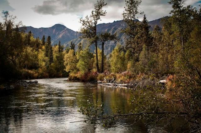 Kijik River Alaska